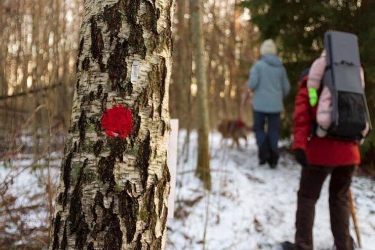 isveçte trekking-gülden notlar (7)